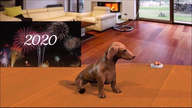Создай рекламный ролик с собакой !